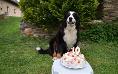 Nenynka má dnes 10. narozeniny